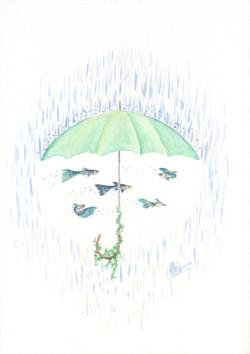 Umbrella Guppies