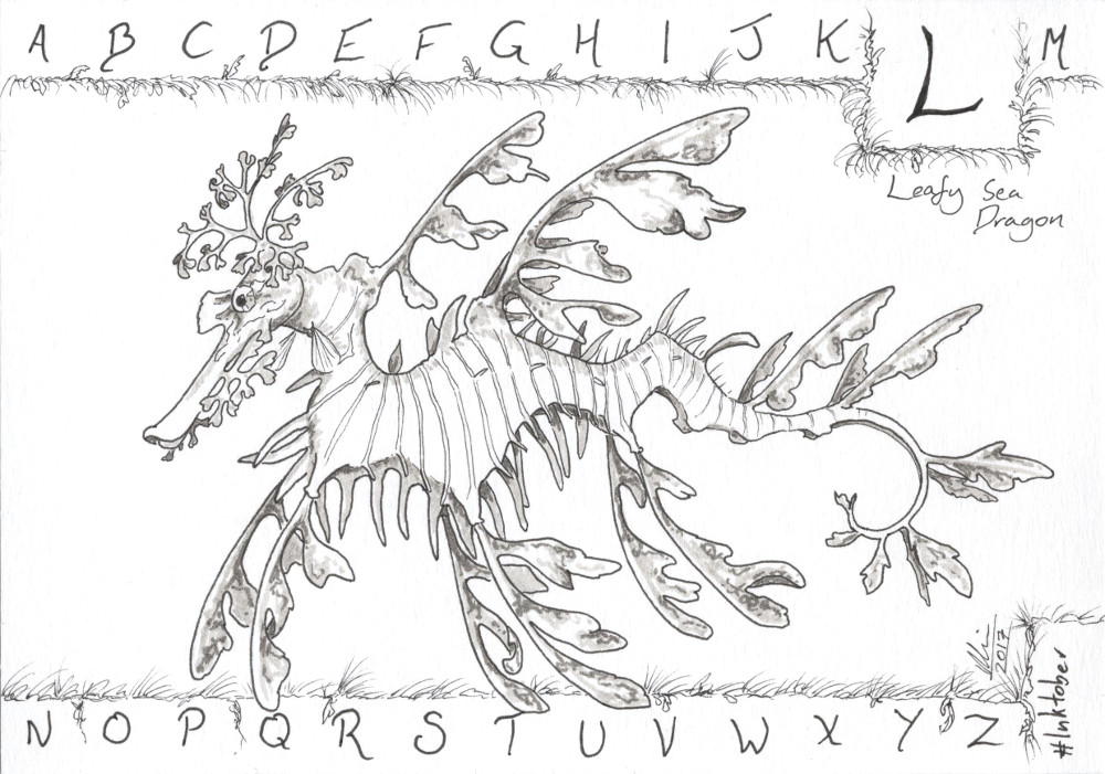 L is for Leafy Sea Dragon