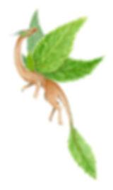 Type - Leafy.jpg