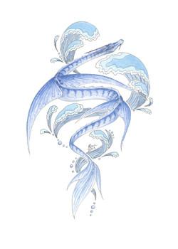 Sea Dragon - Flying fish