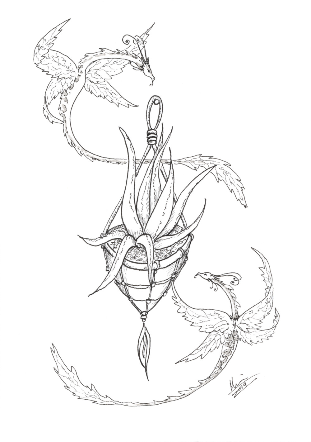 Air plant dragons