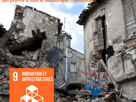 Le développement durable au secours de la Caraïbes : Une habitation durable contre le BIG ONE