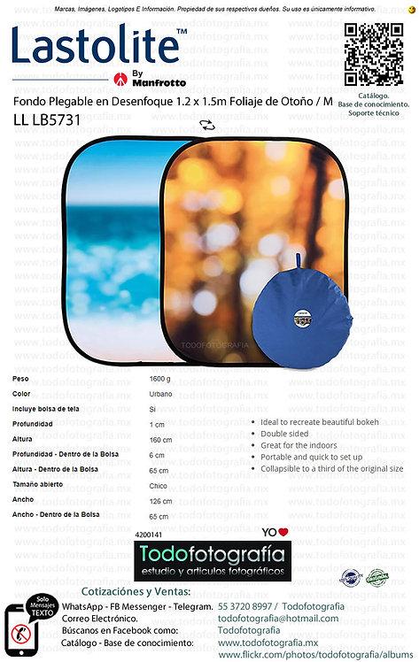 Lastolite LL LB5731 Fondo Plegable Desenfoque Follaje De Otoño (4200141)