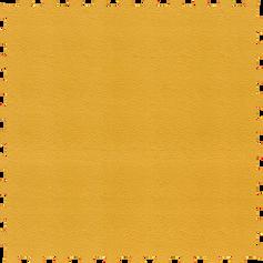Mustard / Mostaza