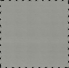 Light Grey / Gris Claro
