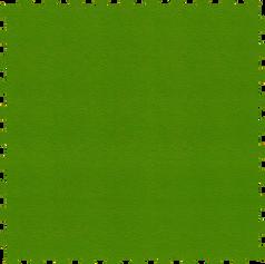 Grass / Hierba