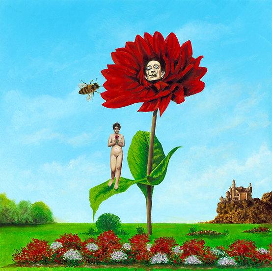 Garden of Salvador Dahlia by Jeff Warren
