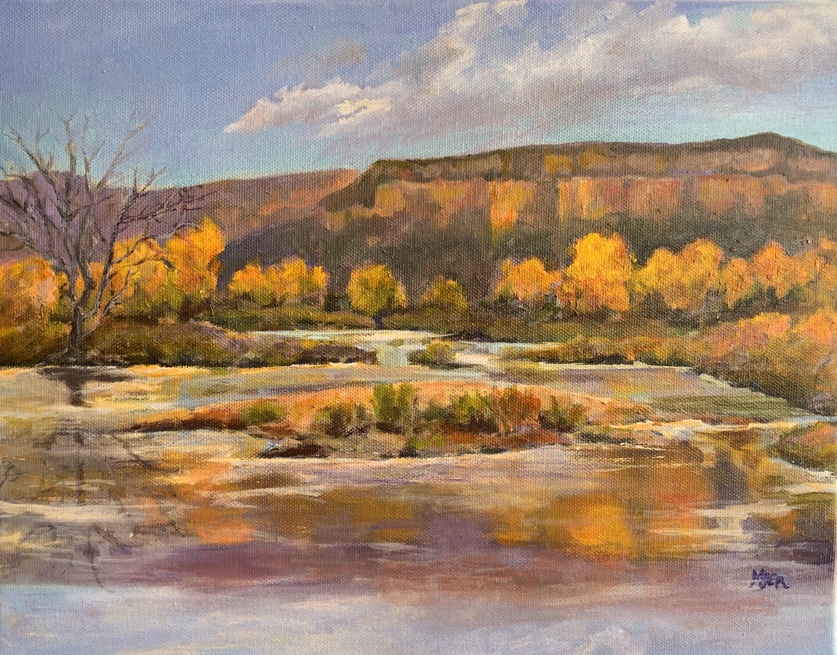 Chama Reflections oil Amelia Myer