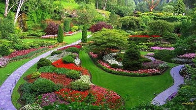 landscaping-services-2.jpg