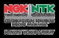 NGK - 304X200.png
