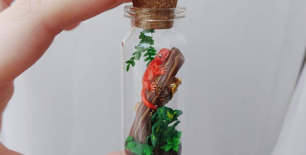 zwei kleine Kronengeckos / Flaschenkunst