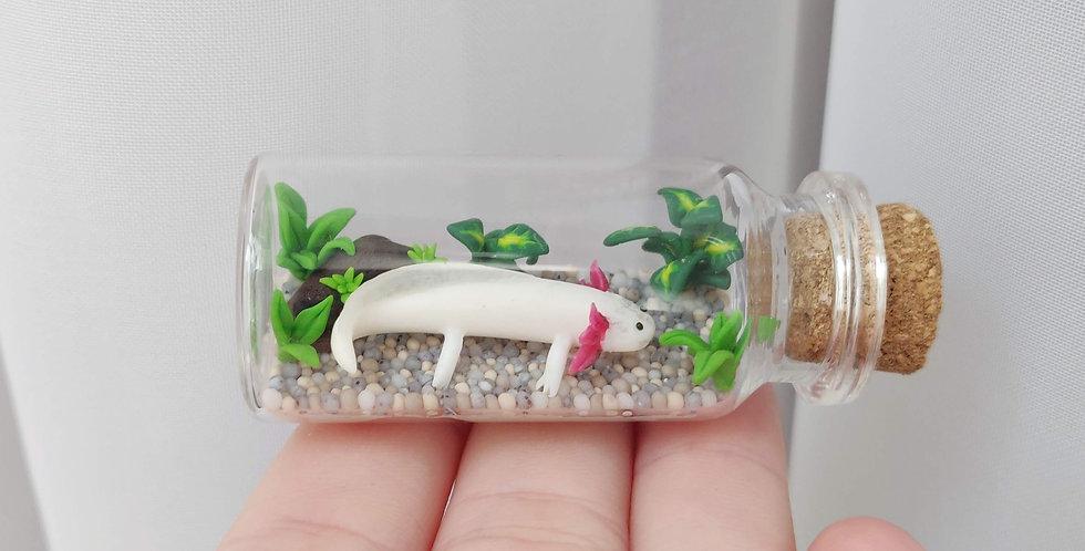 Axolotl / bottle art