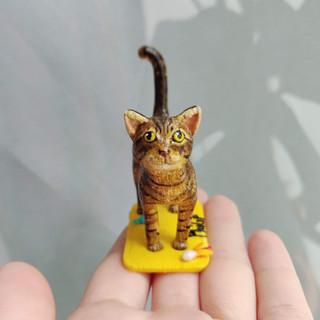 Ataxie Katze / Spezialanfertigung