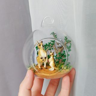 Australien-szene / Glaskugelkunst