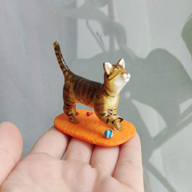 Blinde Katze / Spezialanfertigung