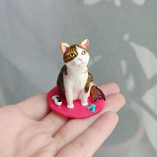 Katze / Spezialanfertigung