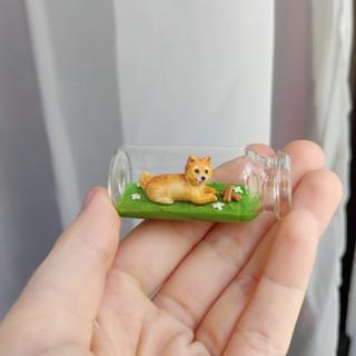 Kleiner Hund / Spezialanfertigung