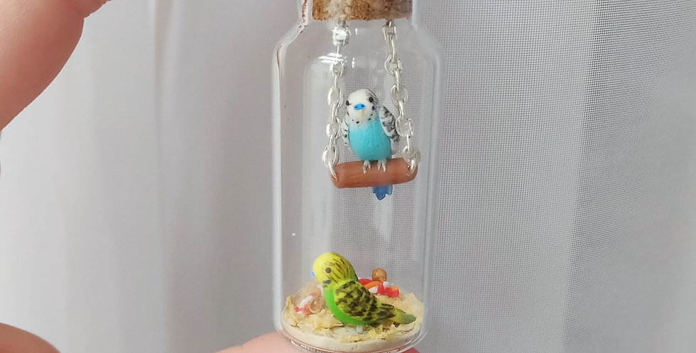Two cute budgies / bottle art