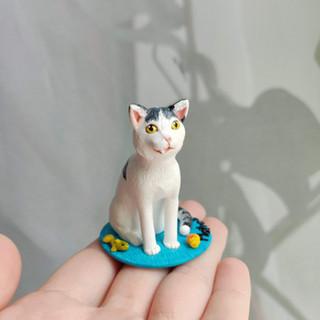 Katze mit überbiss / Spezialanfertigung