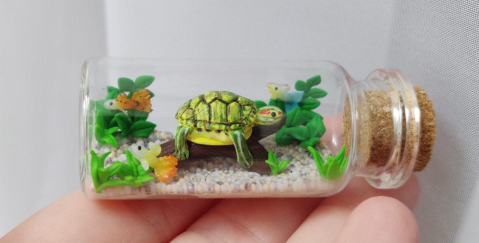 Rotwangen-Schmuckschildkröte mit Fischen / Flaschenkunst
