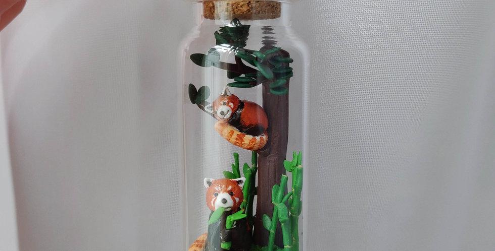 two red pandas/ Bottleart