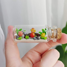 small discus fish aquarium / bottled animals