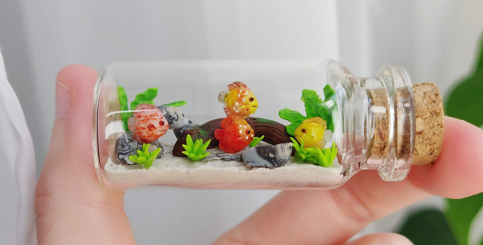 kleines Diskusfisch Aquarium / Flaschentiere