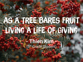 As a Tree Bares Fruit - Living a Life of