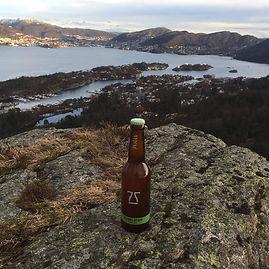 Bergenaskøyfjellet – Kopi.jpg