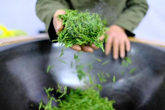 Producing Chinese Tea