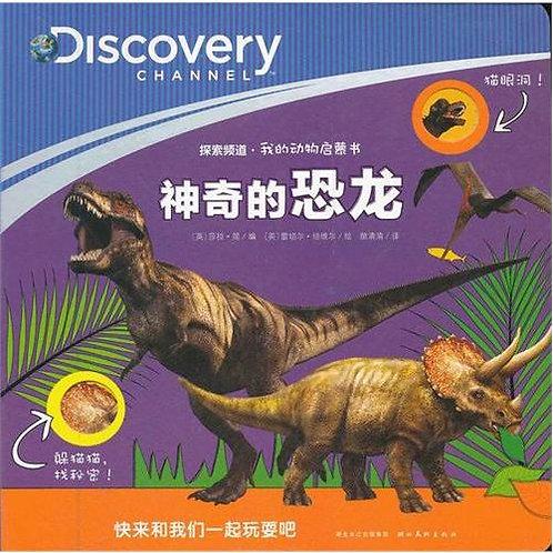 Magic Dinosaur
