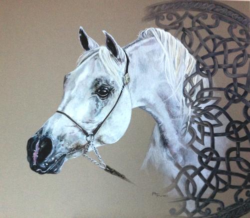 Etalon arabe gris
