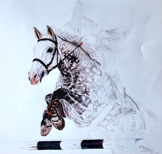 Riad III