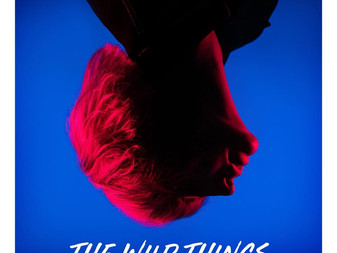 The Wild Things - You're Really Something | Album Review