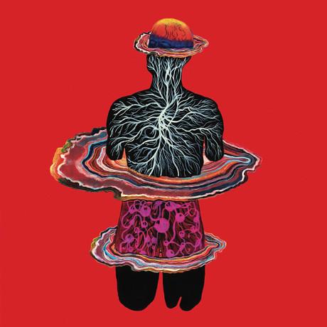 Intervals - Circadian   Album Review