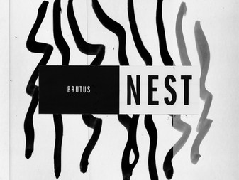 Brutus - Nest | Album Review