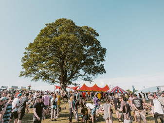 2000 Trees Festival 2019: The Review - Friday