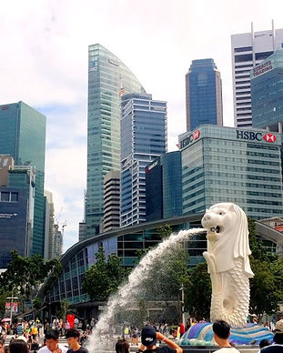 singapore-city_edited.jpg