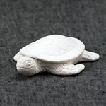 Little baby sea turtle - 1H x 3W