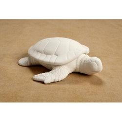 Sea turtle box - 6 1/4 x 7 in.