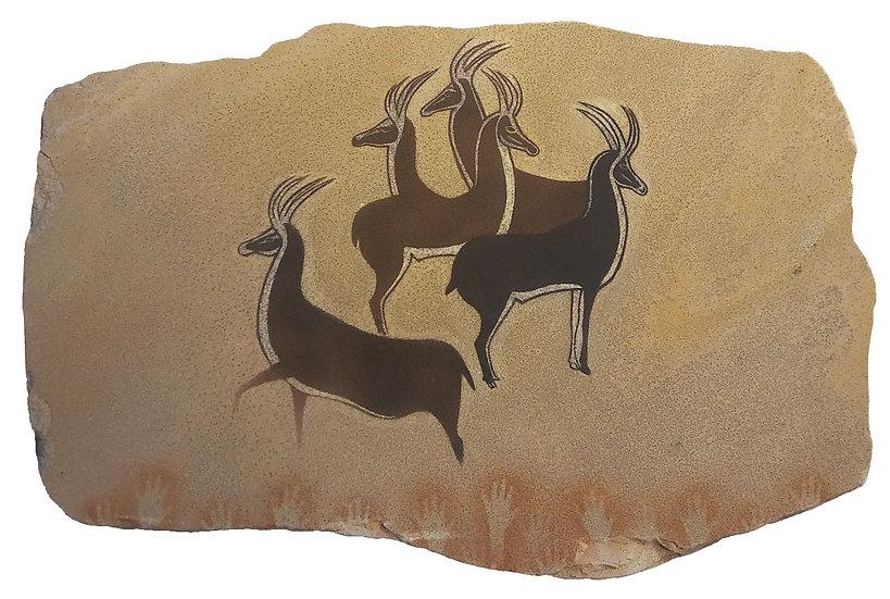 Antelope of Algeria