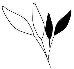 leafs%20big_edited.jpg