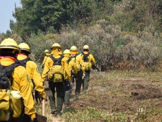 Controlado 90 por ciento de incendio en El Cacique