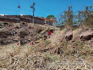Ayuntamiento de Puruándiro Lleva a cabo Limpieza y Retiro de Maleza en Arroyos
