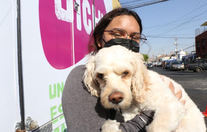 """Lo que hace """"Uichu"""" por nuestras mascotas es una gran oportunidad: Arely"""