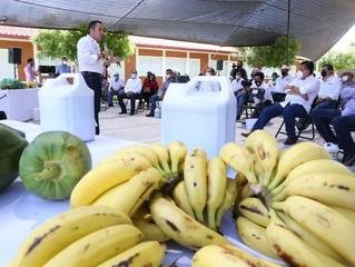 Agricultura Sustentable, el presente y futuro para el desarrollo del campo: Carlos Herrera