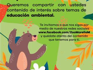 Zoológico de Morelia, prioriza salud de visitantes y fauna