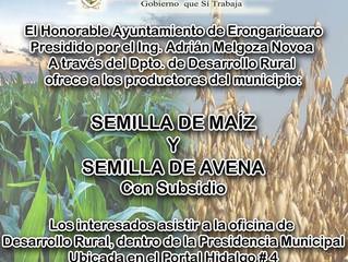 Ayuntamiento de Erongarícuaro inició programa de fertilizantes a bajo costo