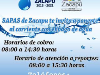 Estamos tratando de rescatar la celebración de la elevación de Jiménez a municipio: Arturo León Balv