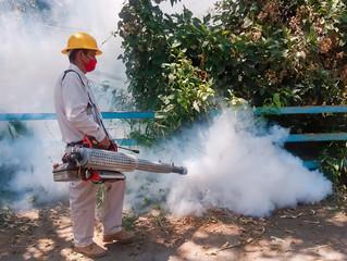 Exhorta SSM a michoacanos mantener entornos limpios y saludables libres de dengue
